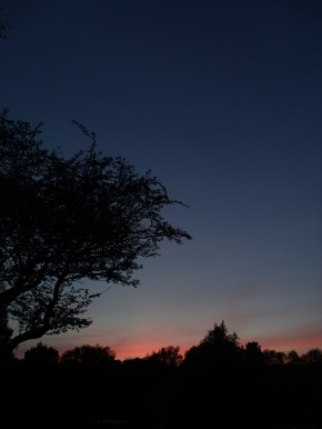 A laboured dawn.