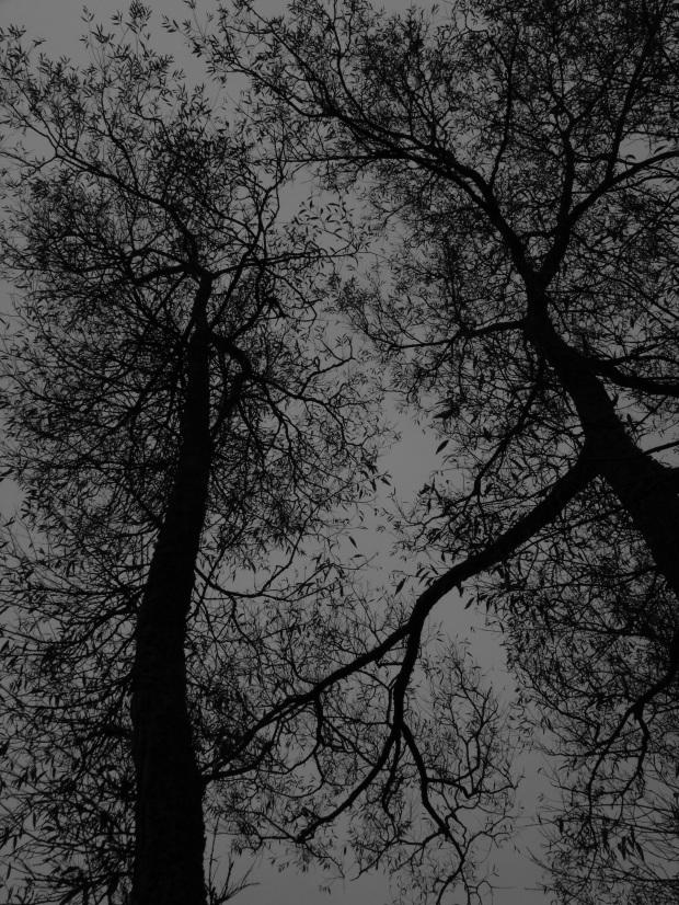 Fragile spires.